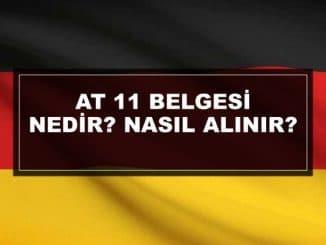 AT 11 Belgesi